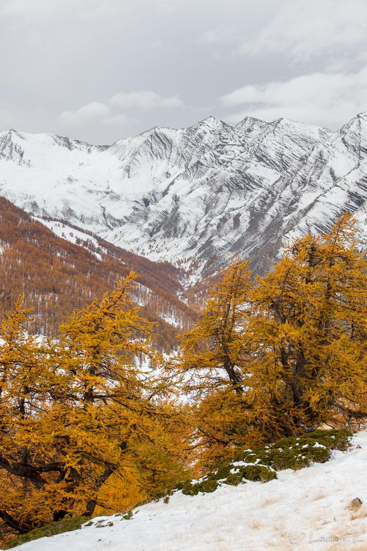 """La vallée du Parpaillon sous la neige     1/125 s à f/9,0 - 100 ISO - 70 mm     28/10/2011 - 14:14     44°28'17"""" N 6°44'20"""" E     2003 m"""