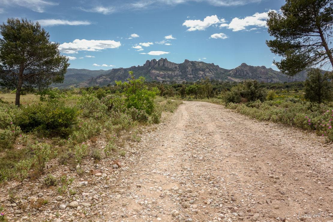 27/04/2014 - 14:34  |  Etape 4 : Fréjus / Bellevue ↔ Le Muy (28,3 kms)  |  Après Fréjus, j'entre dans le coeur de la Provence. Je longe des pistes caillouteuses malaxant mes pieds endoloris. Ici je laisse dans mon dos le célèbre rocher de Roquebrune-sur-Argens. Le temps est toujours aussi agréable.