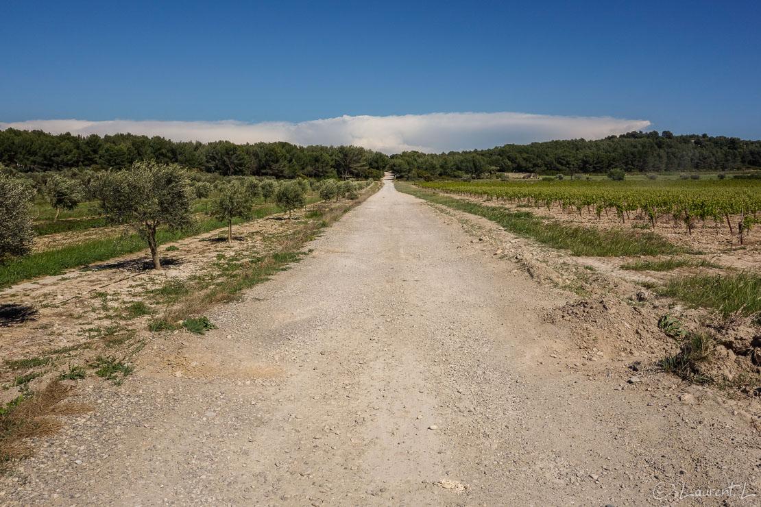 03/05/2014 - 16:21     Etape 10 : Aix-en-Provence / Jas-de-Bouffan ↔ Salon-de-Provence / Les Viougues (37,1 kms)     Cette étape sera la plus longue de cette année. Le Mistral se déchaîne l'après-midi. Les rafales soufflent à plus de 100 km/h et je les prends de face toute la journée. Le vrombissement continu du vent me fait tourner la tête. Me voilà contraint de mettre des boules Quiès ! J'engage physiquement pour avancer contre le vent. Ici nous sommes sur l'authentique voie romaine Aurelia à 10 kms de Salon. Au loin vers l'est  en me retournant j'aperçois un énorme cumulo-nimbus (nuage d'orage) sur le Var, là où j'étais il y a quelques jours...