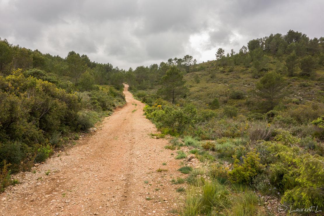 25/04/2015 - 14:46  |  Etape 17 : Grabels - Montarnaud est (12,8 kms)  |  Je reprends en cette année 2015 le Chemin d'Arles en débutant par une demie-étape. Je suis ému malgré un temps pluvieux car je sais que je vais traverser de belles régions d'une part, que je croiserai plus de pèlerins que l'année précédente d'autre part. De plus, j'ai pris trois semaines pleines de congés pour poursuivre mon périple vers le sud-ouest. L'aventure quoi ! A peine parti de chez mes amis, je double au milieu de nulle part deux pèlerins partis d'Arles. Cette année, je ne vivrai pas une traversée déserte comme en Provence, c'est sûr.