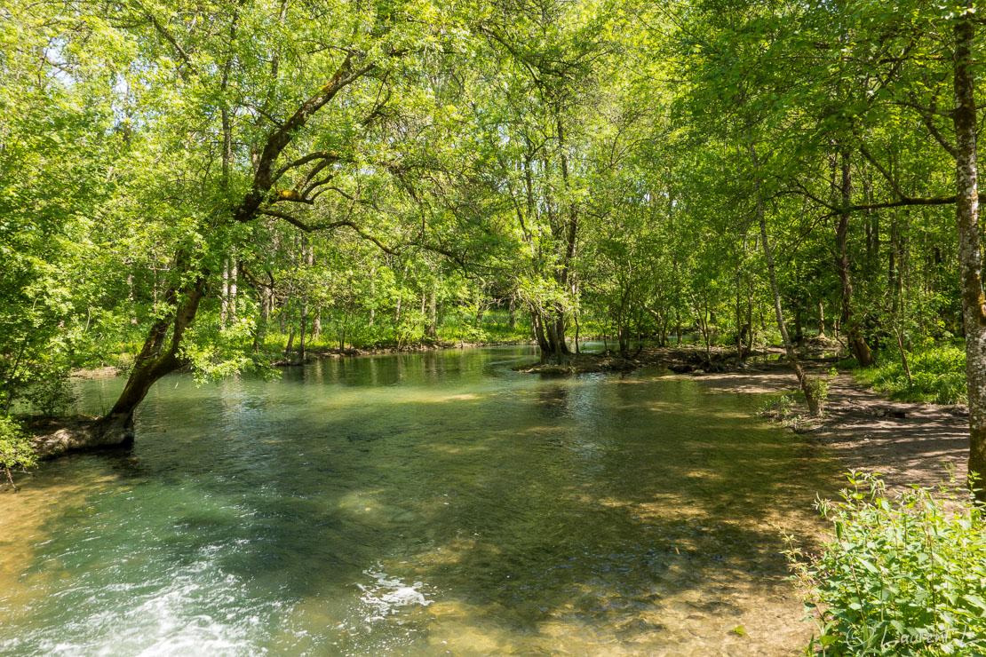 """Etape 6 : Saint Bris-des-Bois ↔ Cognac (23,1 kms)     04/05/2018 - 14:19     45°43'10"""" N 0°21'34"""" W     8 m     Avant d'arriver à Cognac, je longe le cours d'eau de l'Antenne, un affluent de la Charente propice aux promenades dominicales. C'est un site Natura 2000, ce qui au vu de sa biodiversité ne me surprends pas. Cette partie du GR4 fait une place de choix aux écosystèmes des cours d'eau. le lendemain, je dois longer la Charente."""